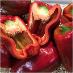 Fresh red pepper (Pimiento...