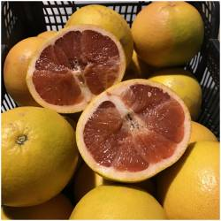 Red grapefruit (Pomelos)
