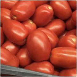 """Tomaten """"Roma"""" (Tomates Roma)"""