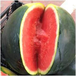 Wassermelone Rallada...