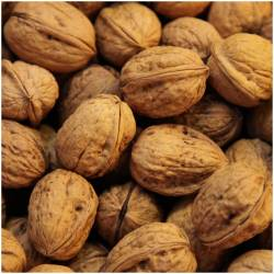 Walnuts, fresh from Jabugo...