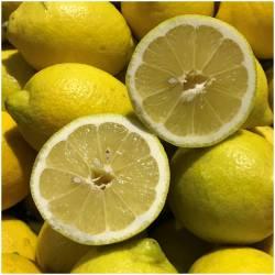 Frische Zitronen direkt vom...