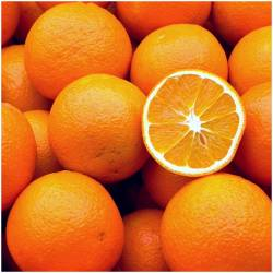 oranges straight from the...