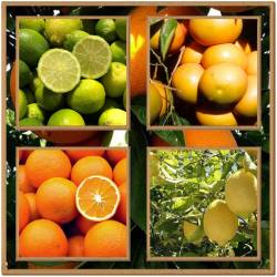 Citrus mix package