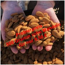 Unpeeled raw almonds