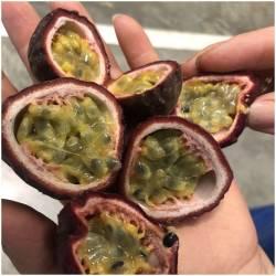 1 Kilo  Violette Maracuja